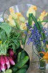 Kulinarne warsztaty międzypokoleniowe_Zielony Jazdó_Kwiaty jadalne_Fundacja ZACZYN-10