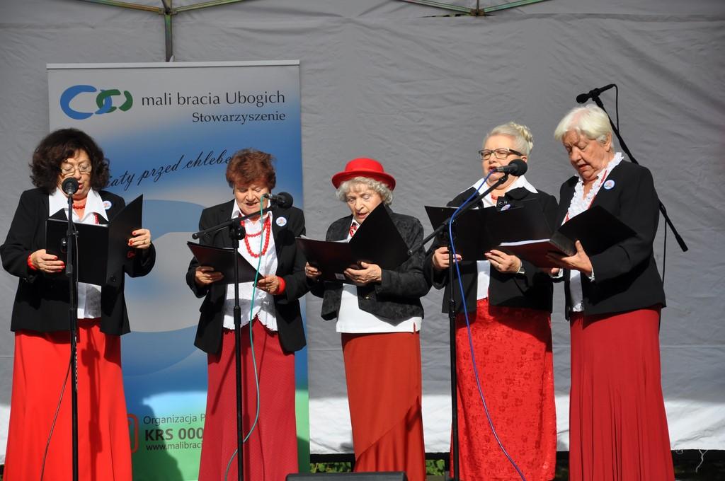 Piknik MiędzynarodowyDzień Osób Starszych, Ogród Saski 2014 - Fundacja ZACZYN  (18)