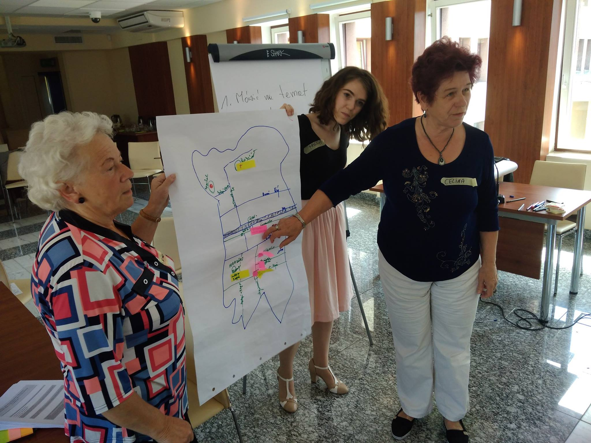 Wołomińska Rada Seniorów (6)